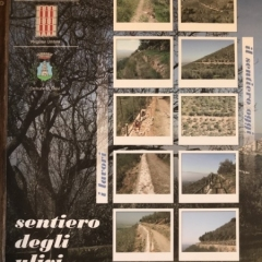 Visit-in-Italy-23